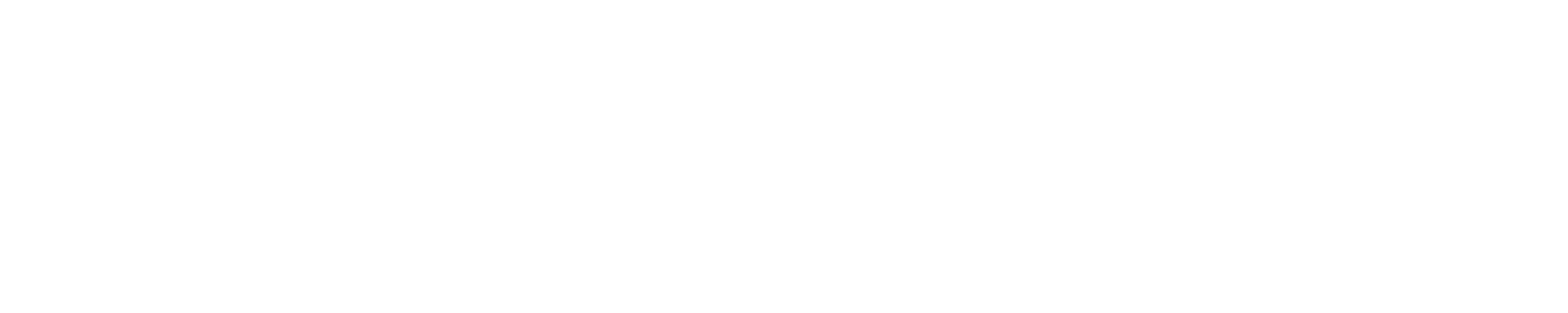 OEM AUTOMATIC